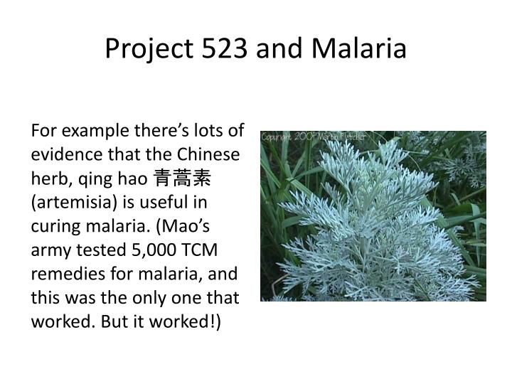 Project 523 and Malaria