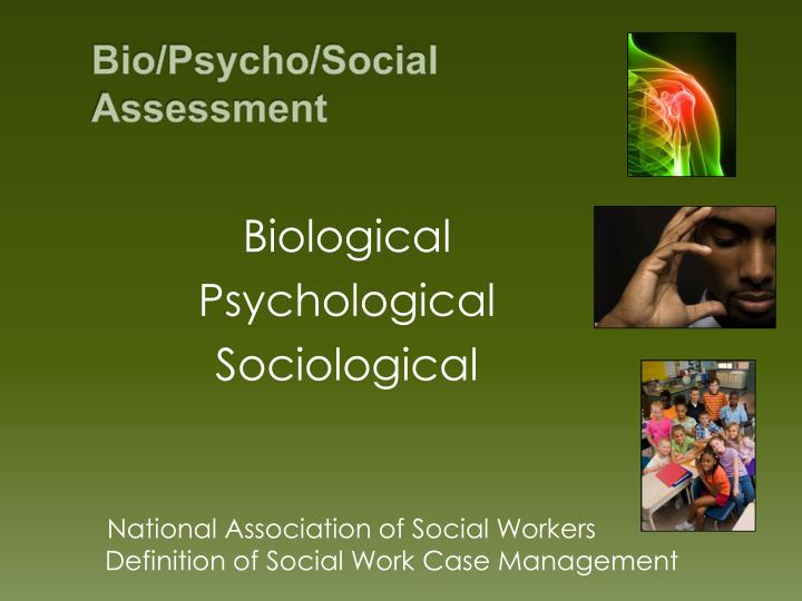 Bio/Psycho/Social