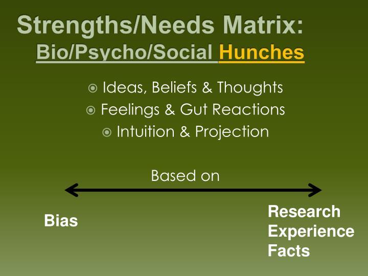 Strengths/Needs Matrix: