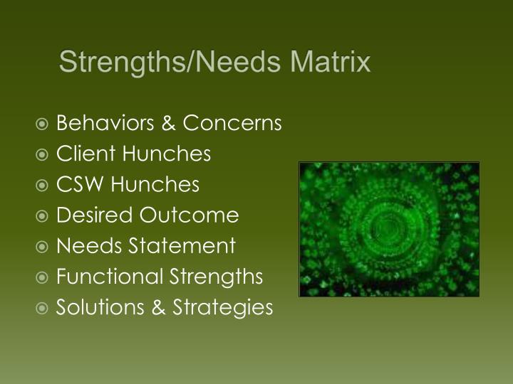 Strengths/Needs Matrix
