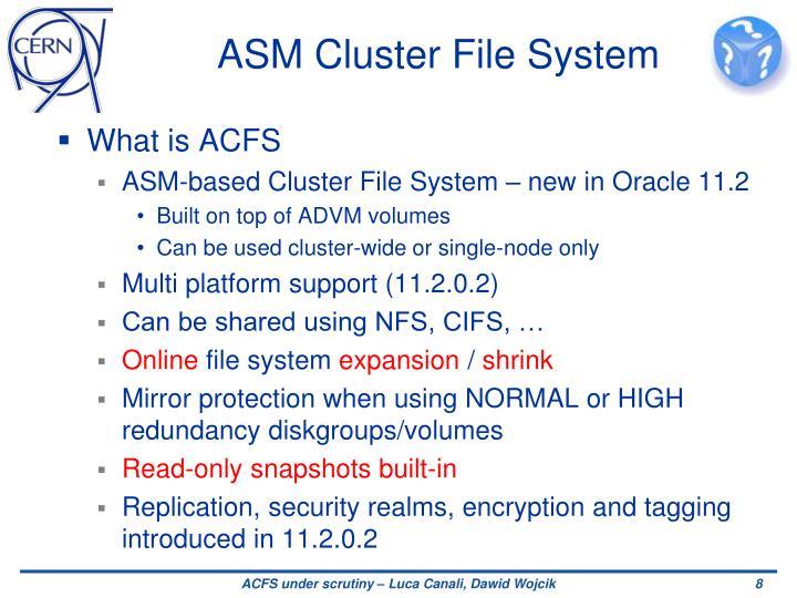 ASM Cluster File System
