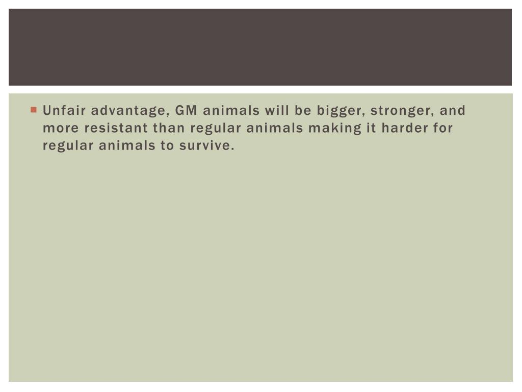 Unfair advantage, GM animals will be bigger, stronger, and more resistant than regular animals making it harder for regular animals to survive.
