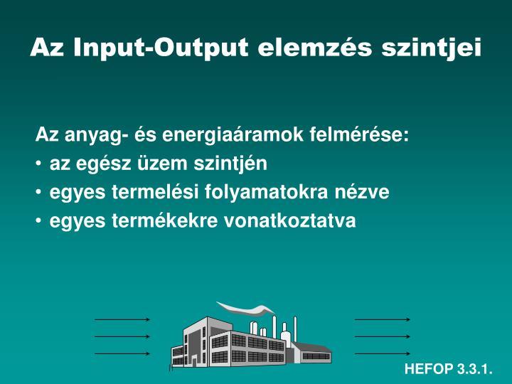 Az Input-Output elemzés szintjei