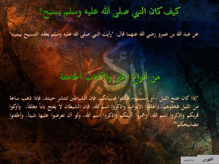كيف كان النبي صلى الله عليه وسلم يسبح؟
