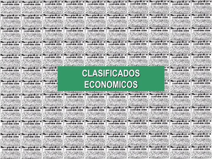 CLASIFICADOS ECONOMICOS