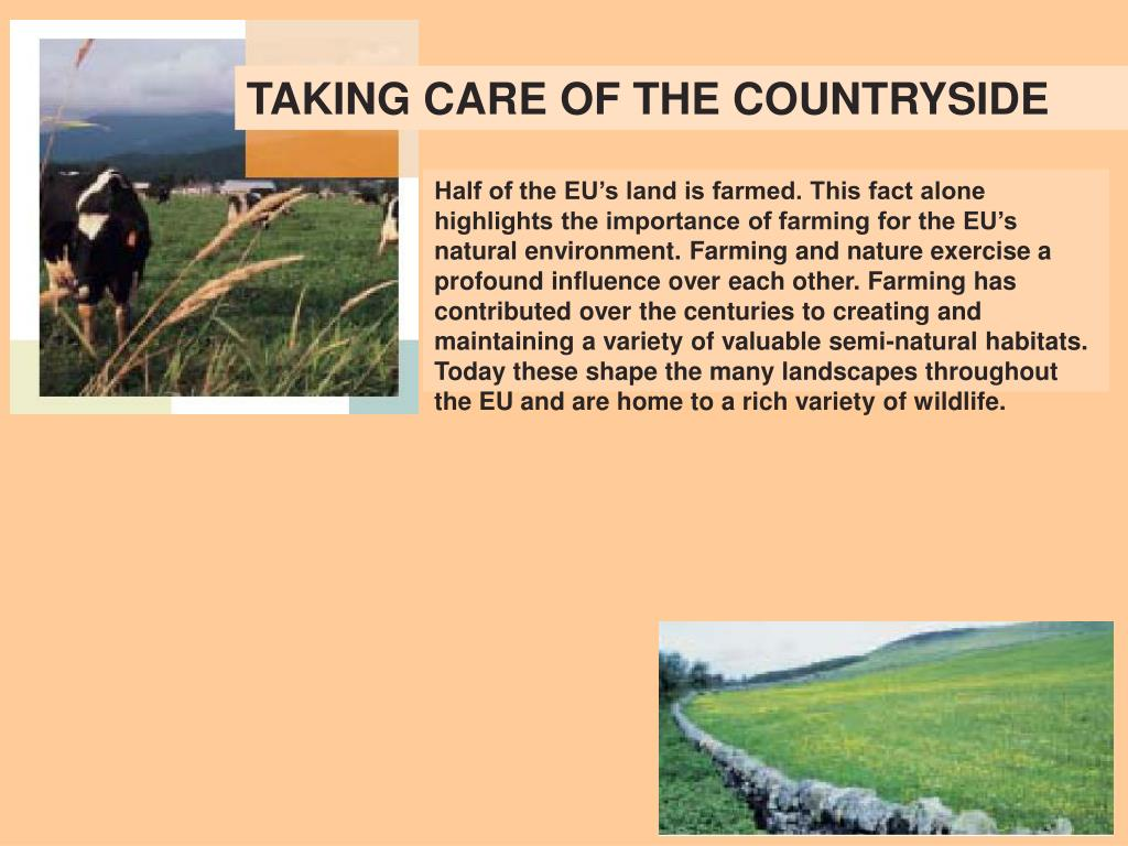 TAKING CARE OF THE COUNTRYSIDE