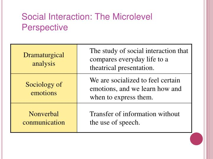 Social Interaction: The Microlevel Perspective
