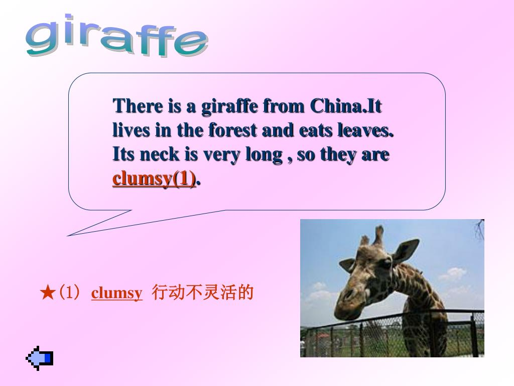 There is a giraffe from China.It lives in the forest and eats leaves. Its neck is very long , so they are
