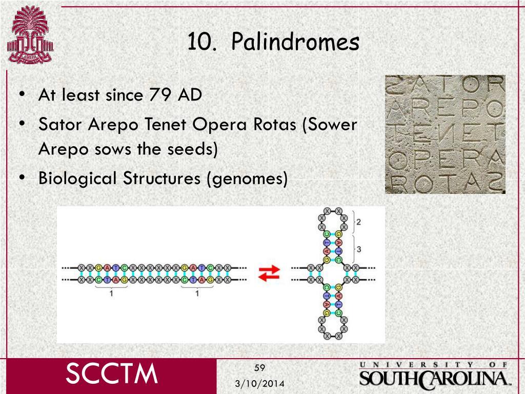 10.  Palindromes