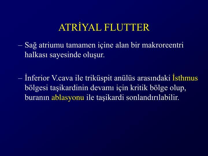 ATRİYAL FLUTTER