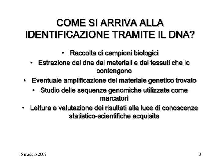 COME SI ARRIVA ALLA IDENTIFICAZIONE TRAMITE IL DNA?