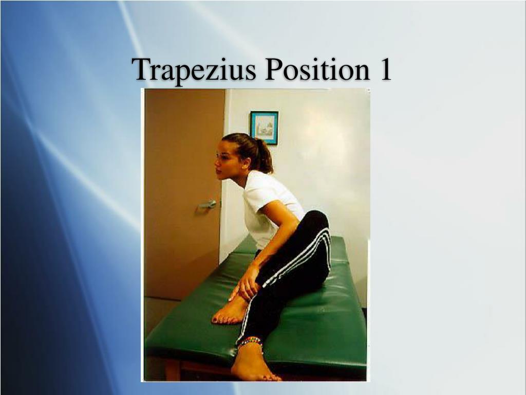 Trapezius Position 1