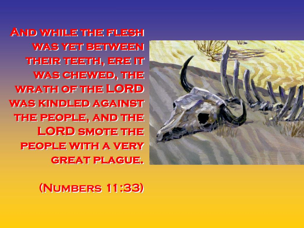 And while the flesh was yet between their teeth, ere it was chewed, the wrath of the LORD was kindled against the people, and the LORD smote the people with a very great plague.