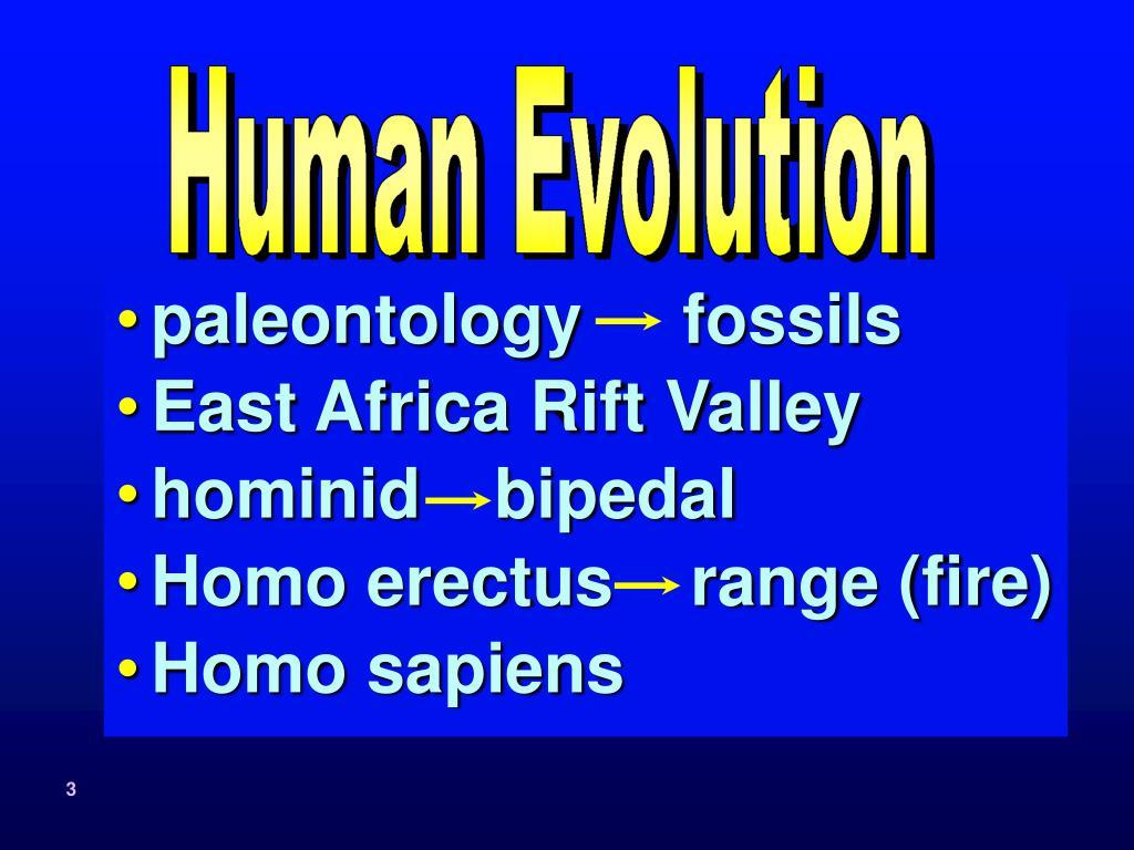 paleontologyfossils