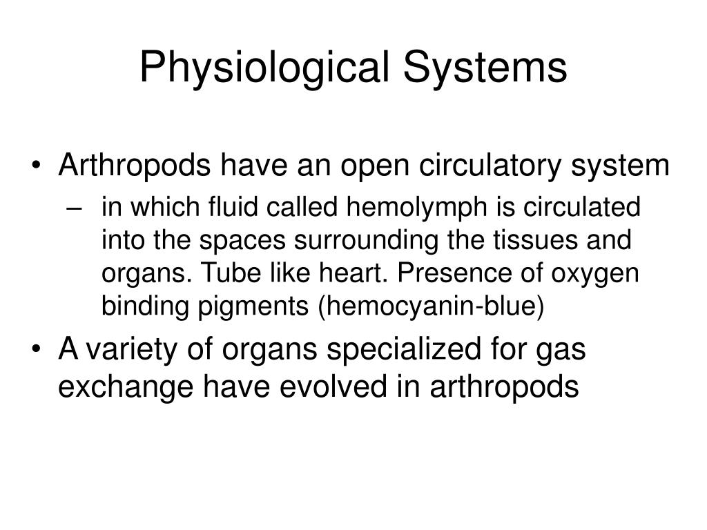 Physiological Systems