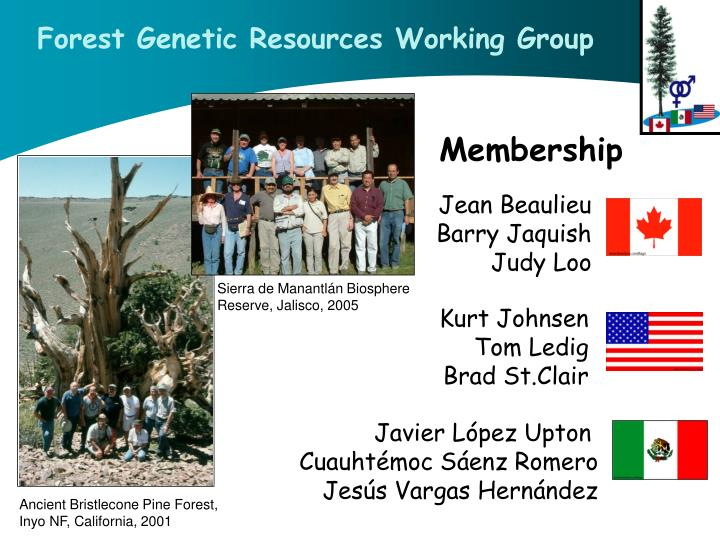 Forest Genetic Resources Working Group