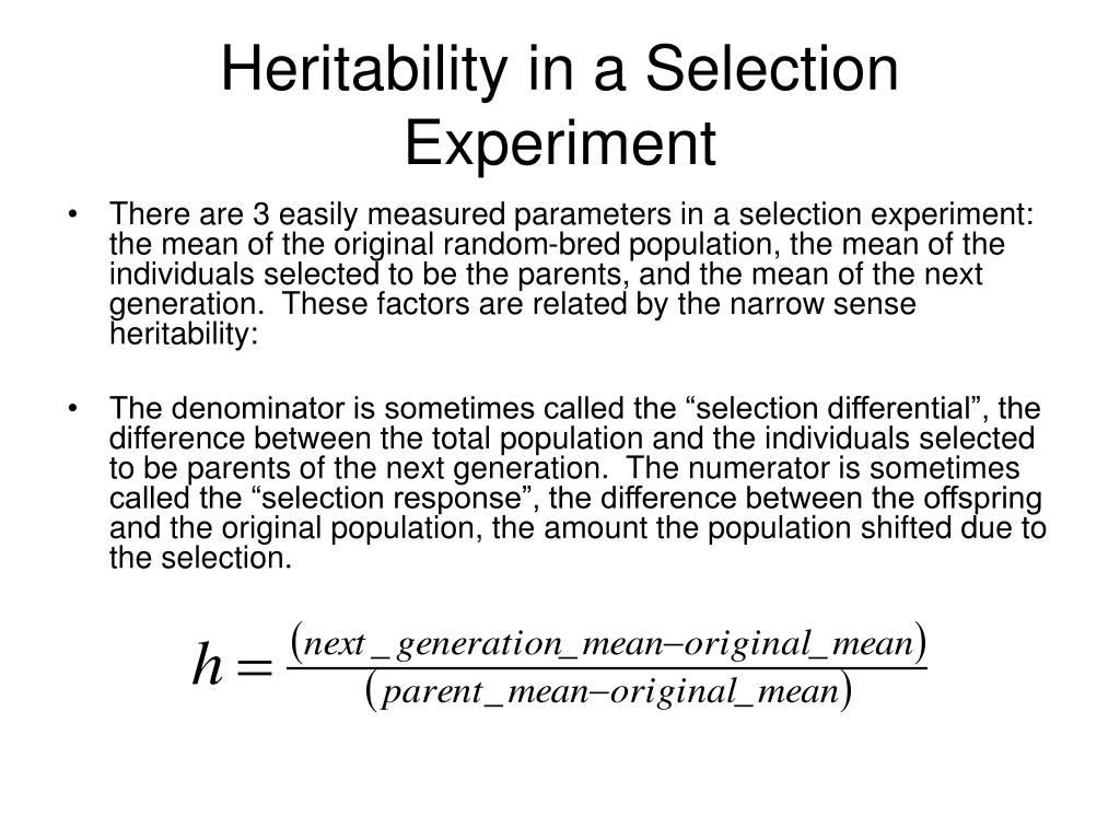 Heritability in a Selection Experiment