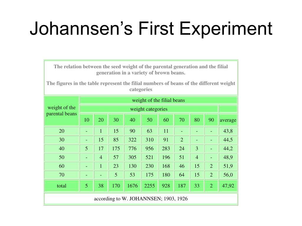 Johannsen's First Experiment