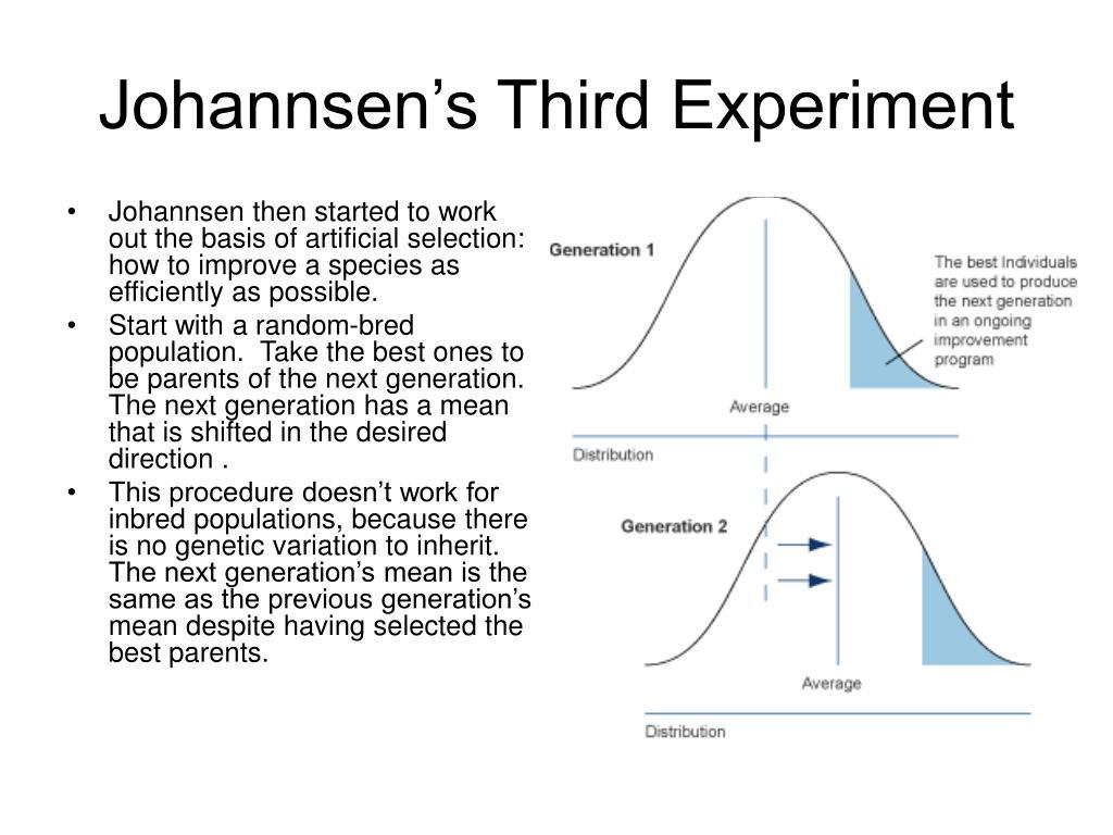 Johannsen's Third Experiment