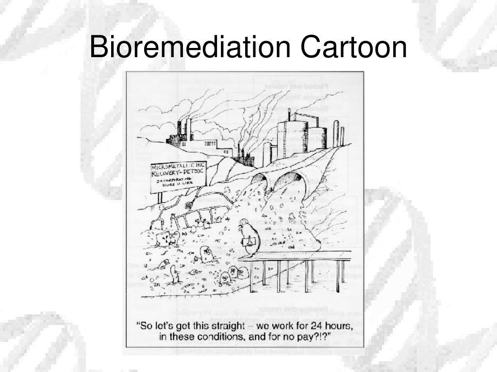 Bioremediation Cartoon