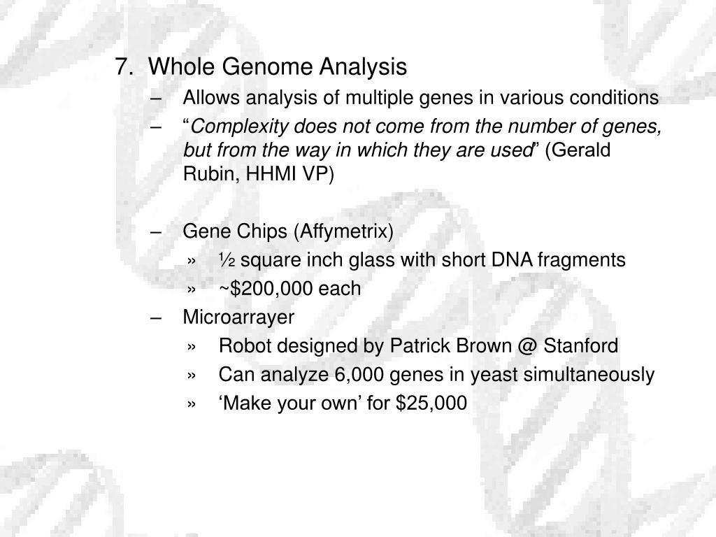 7.  Whole Genome Analysis