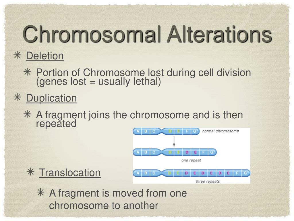 Chromosomal Alterations