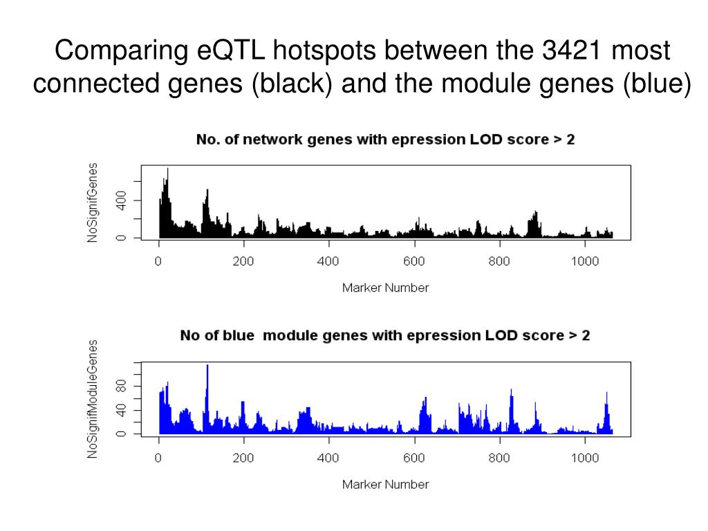 Comparing eQTL hotspots between the 3421 most connected genes (black) and the module genes (blue)