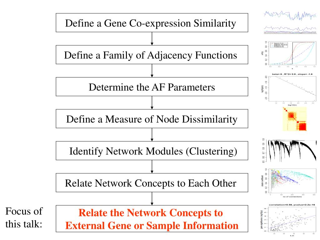 Define a Gene Co-expression Similarity