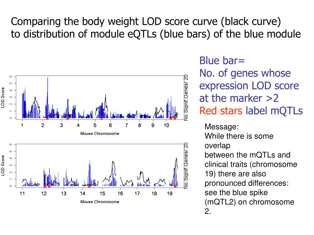 Comparing the body weight LOD score curve (black curve)