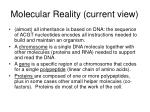 molecular reality current view