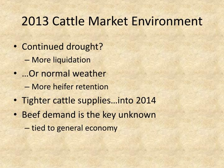 2013 Cattle Market Environment