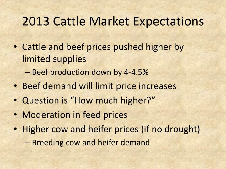 2013 Cattle Market Expectations