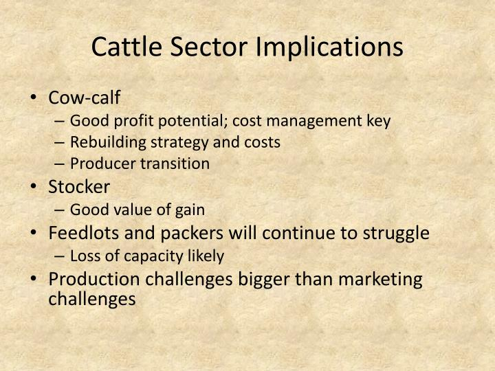 Cattle Sector Implications