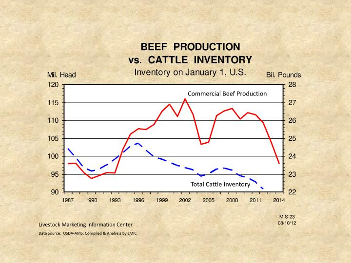 Commercial Beef Production