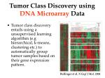 tumor class discovery using dna microarray data