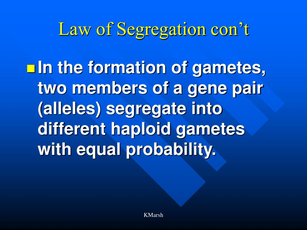 Law of Segregation con't
