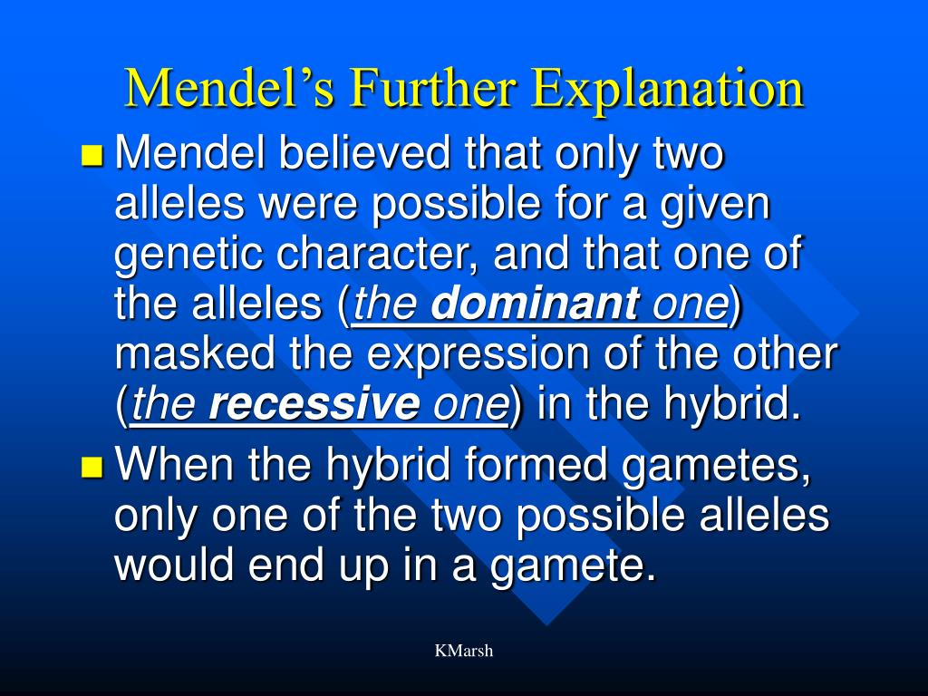 Mendel's Further Explanation