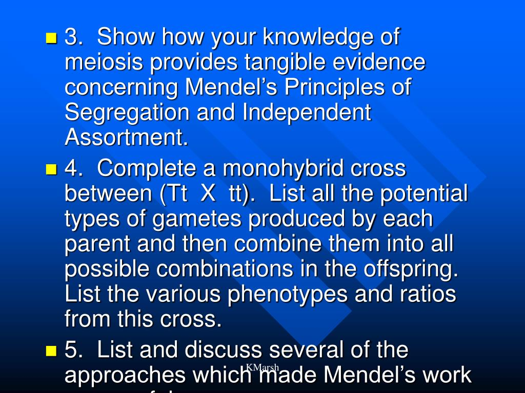 3.  Show how your knowledge of meiosis provides tangible evidence concerning Mendel's Principles of Segregation and Independent Assortment.