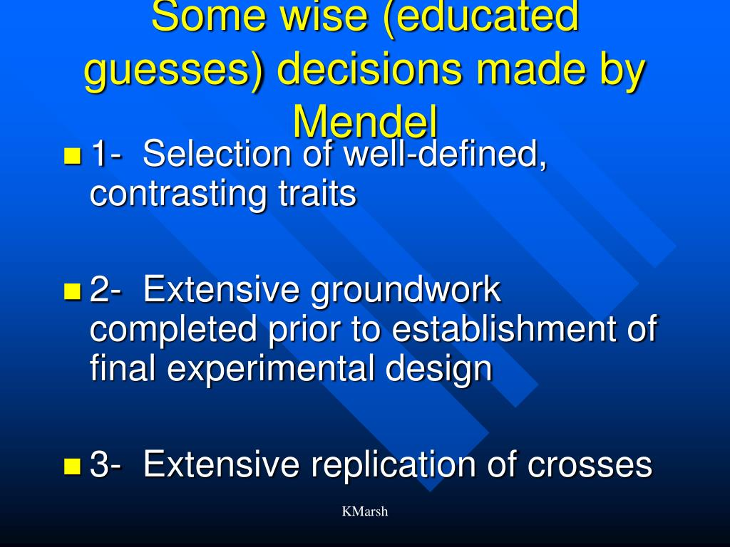 Some wise (educated guesses) decisions made by Mendel