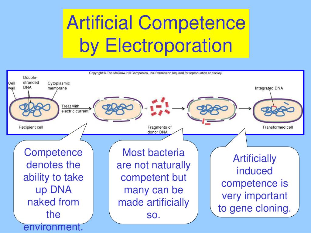 Artificial Competence