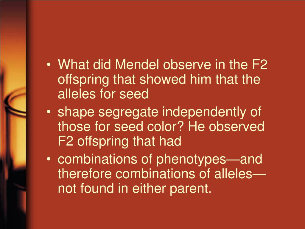 What did Mendel observe in the F2 offspring that showed him that the alleles for seed