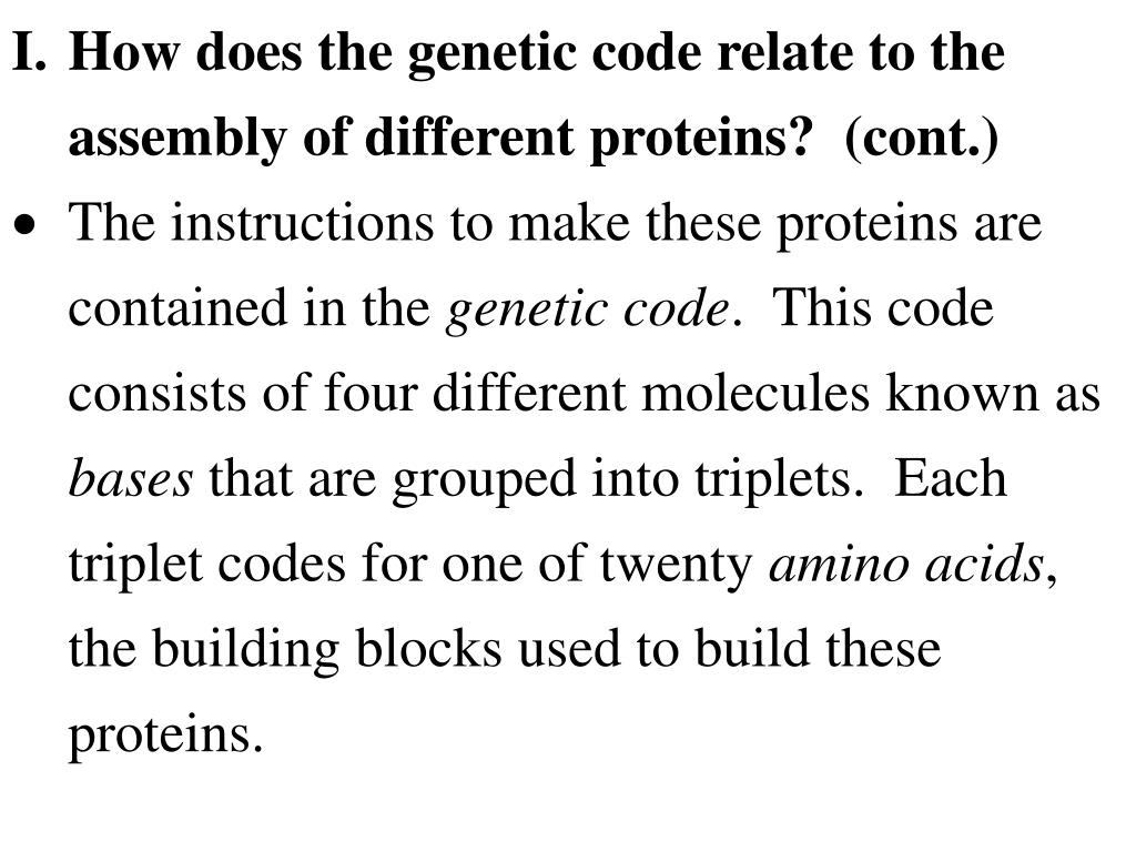 I.How does the genetic code relate to the assembly of different proteins?  (cont.)