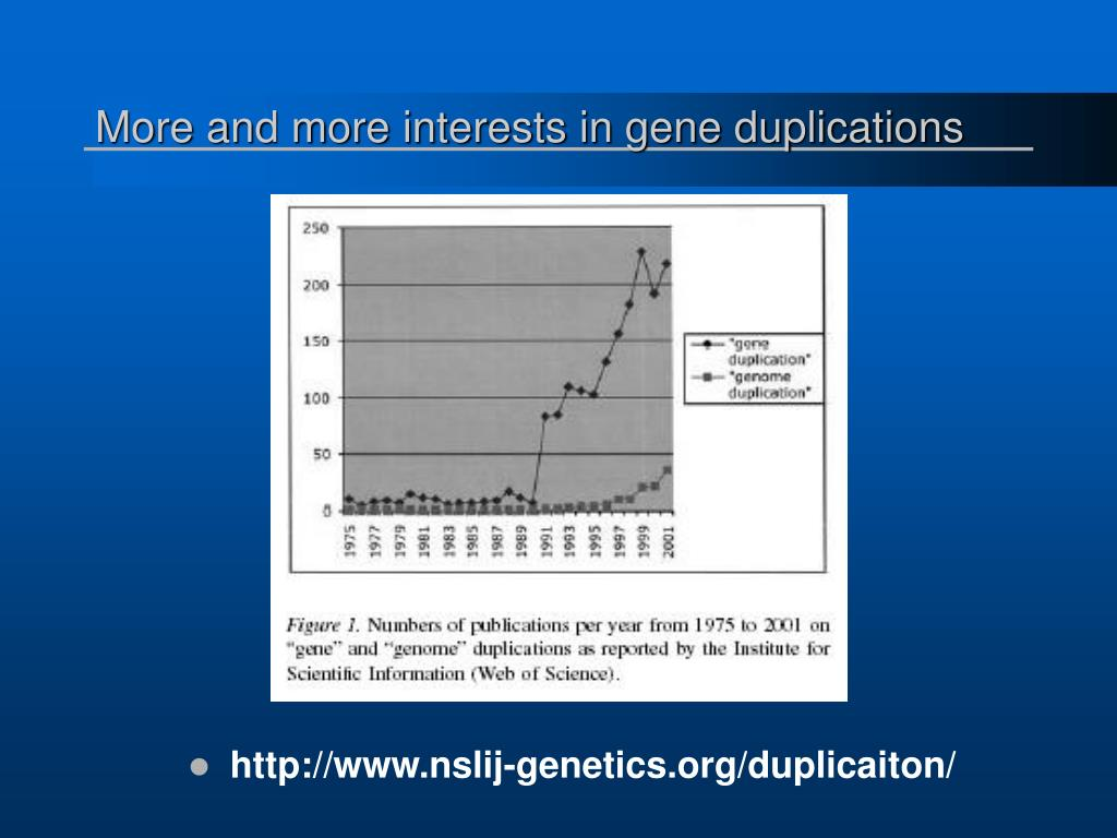 More and more interests in gene duplications