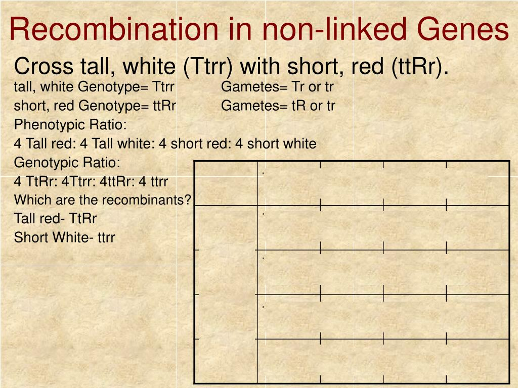 Recombination in non-linked Genes