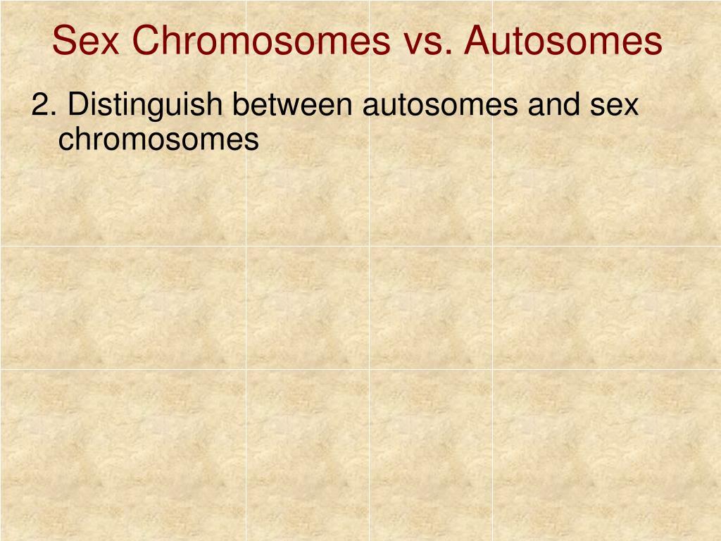 Sex Chromosomes vs. Autosomes