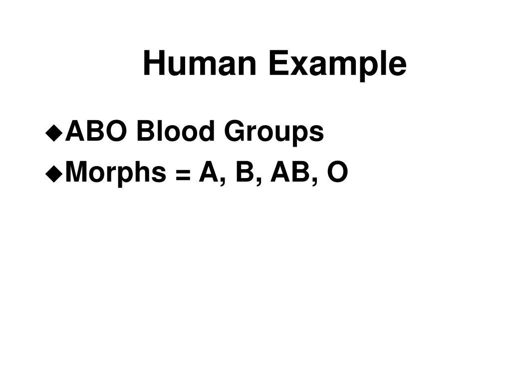 Human Example