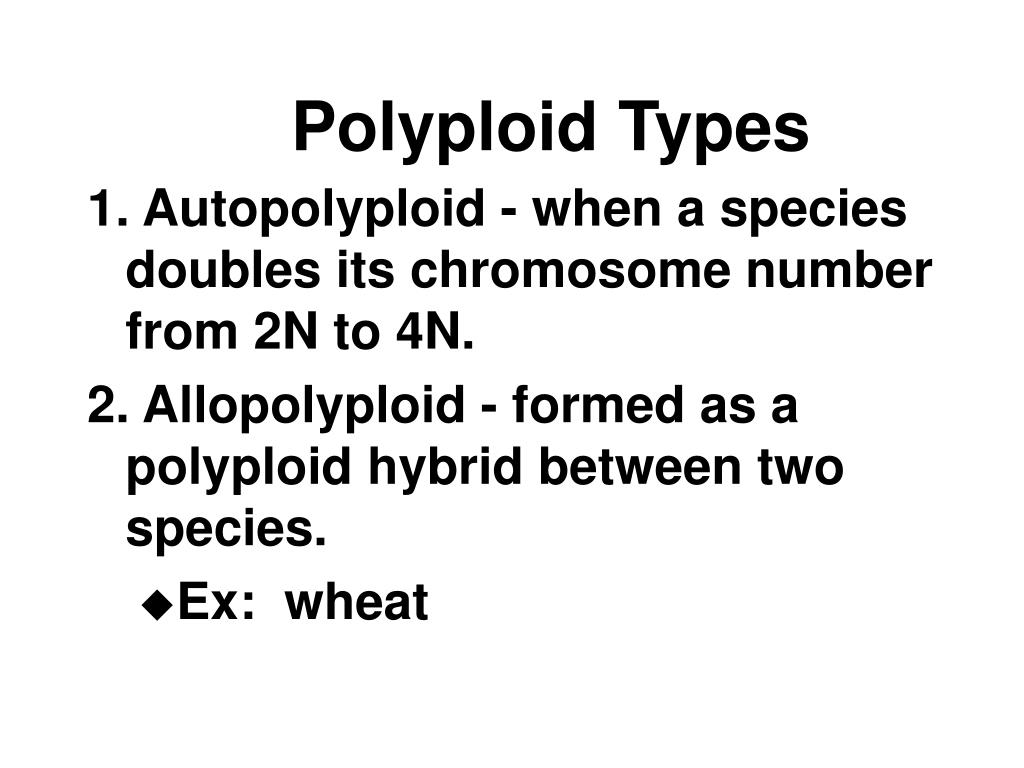 Polyploid Types