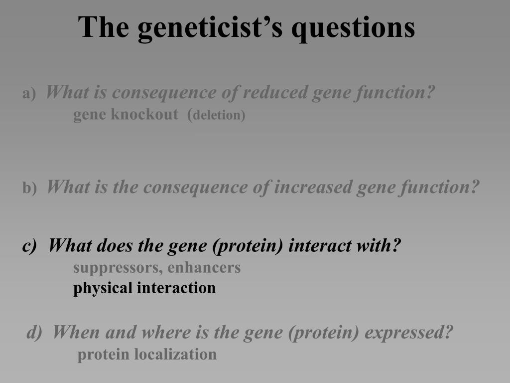 The geneticist's questions