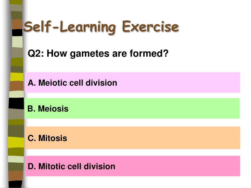 Self-Learning Exercise