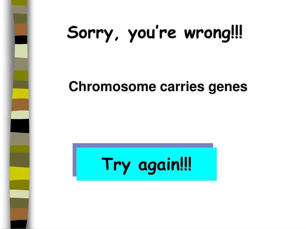 Sorry, you're wrong!!!